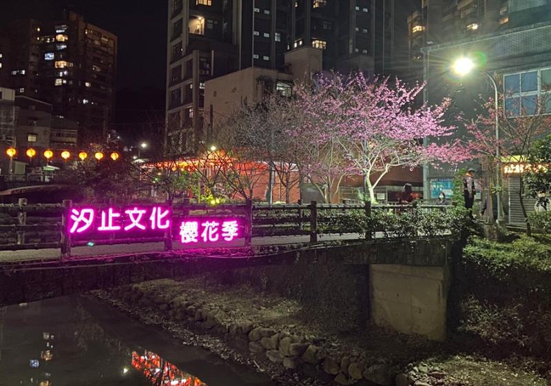 戶外展覽|汐止文化櫻花季
