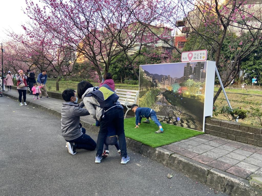 戶外展覽 汐止櫻花季進場完工